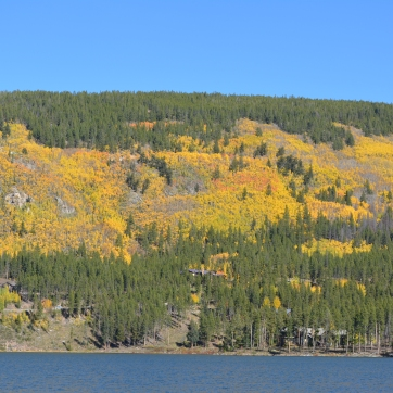 Boreas Pass Road on the hillside. Leaves leaving here also.