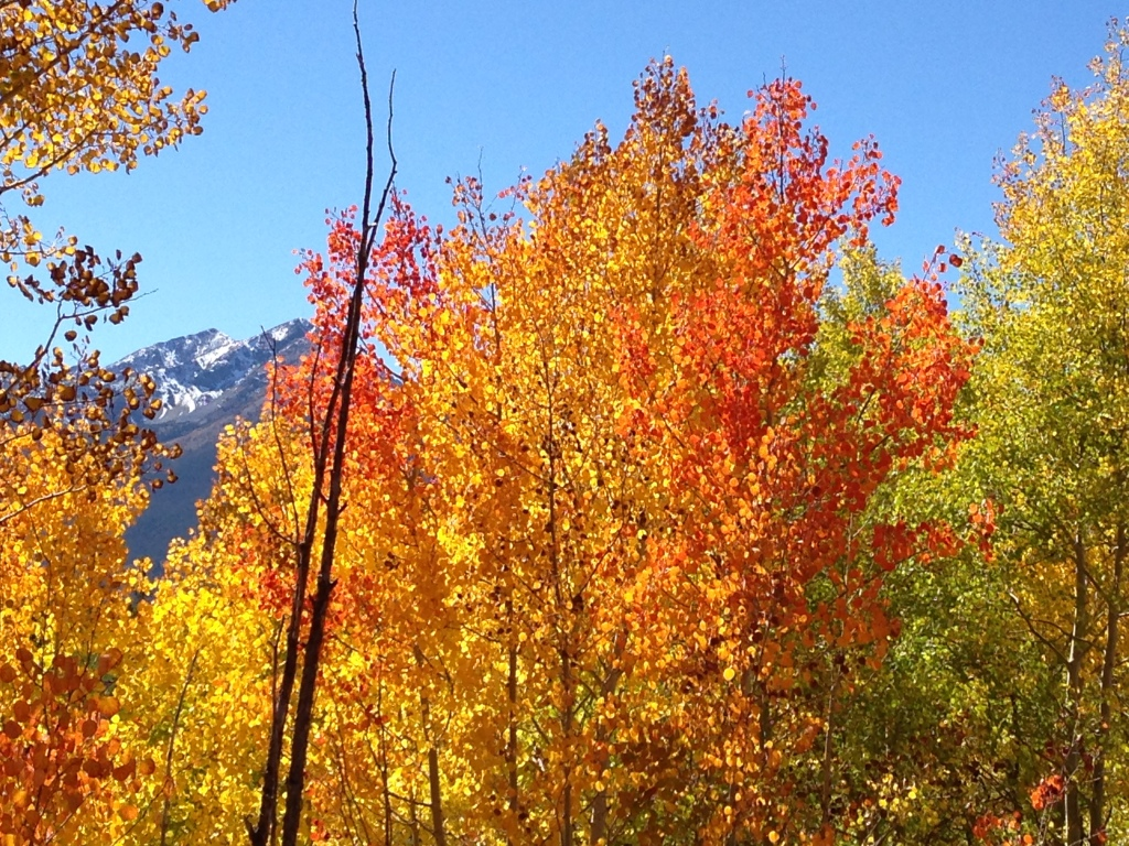iPhone5 pic I'm sorry to say.  Taken along Dillon Dam bike path.  Background is Peak 1 by Frisco.