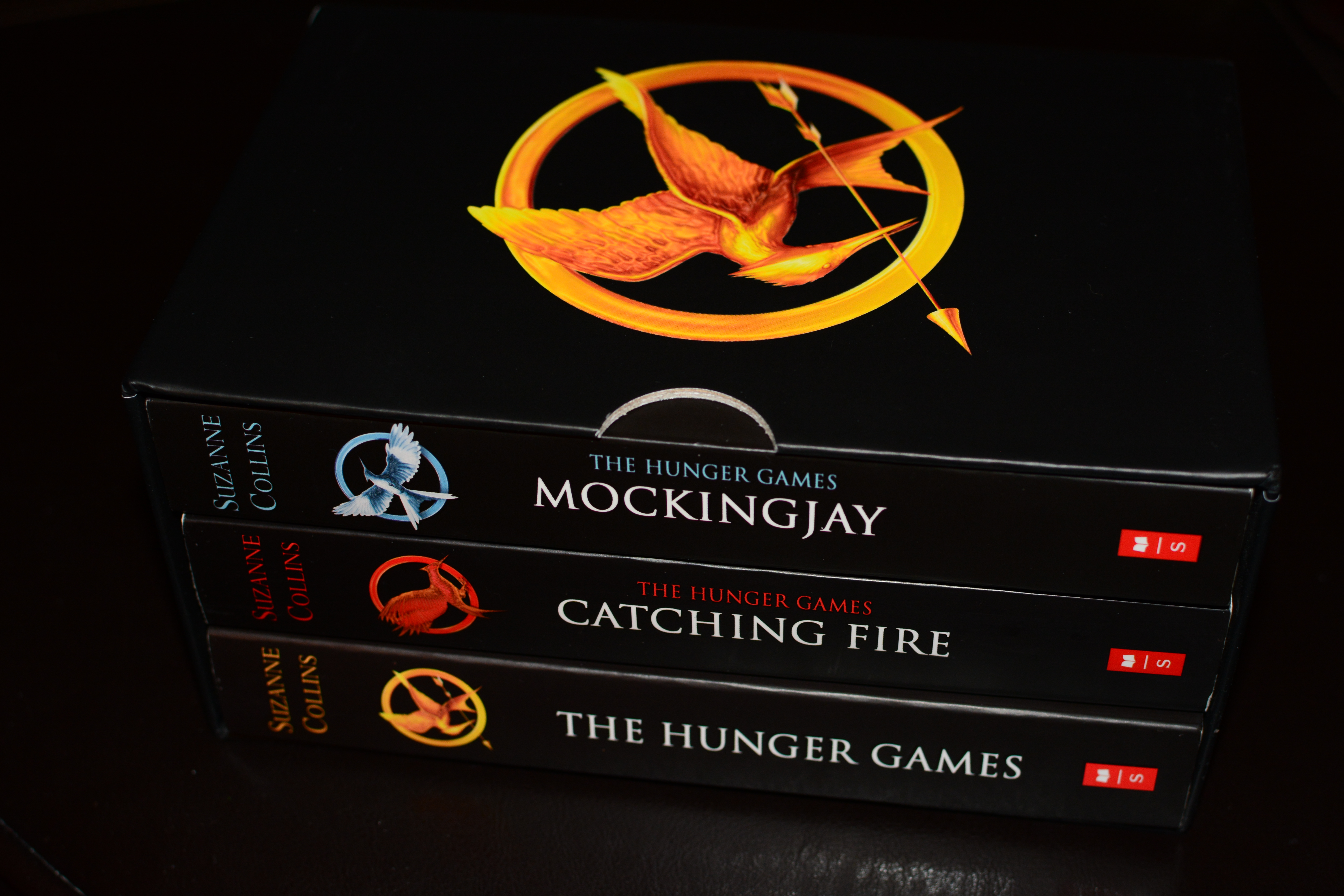 The Hunger Games research paper?