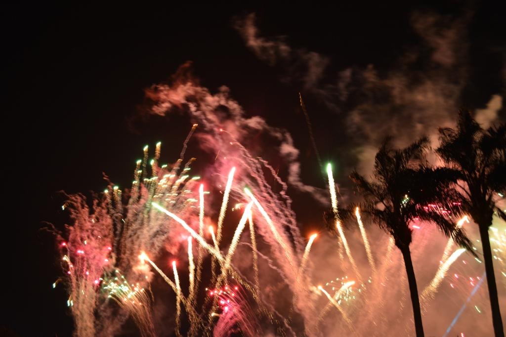 Fireworks EVERY night.