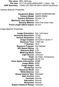 Exif for 4545