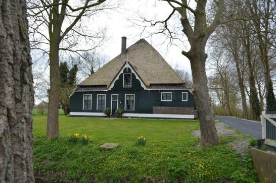 A 'pyramid' house on the polder.