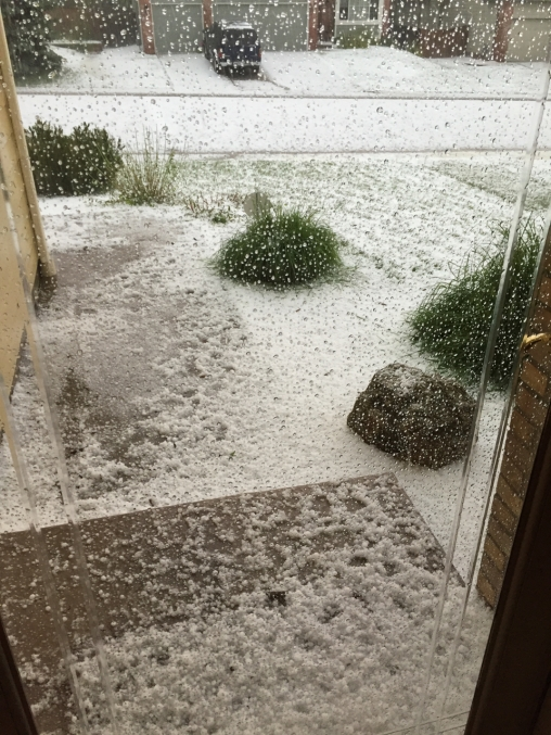 6 June 2016 Front yard hail