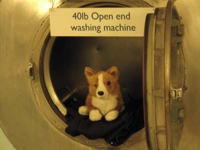 Wash my blankie please?